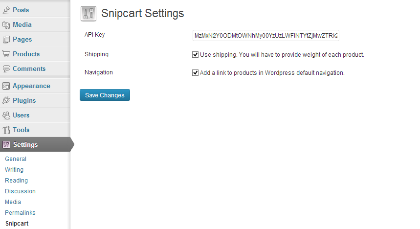 Snipcart wordpress Api Key settings
